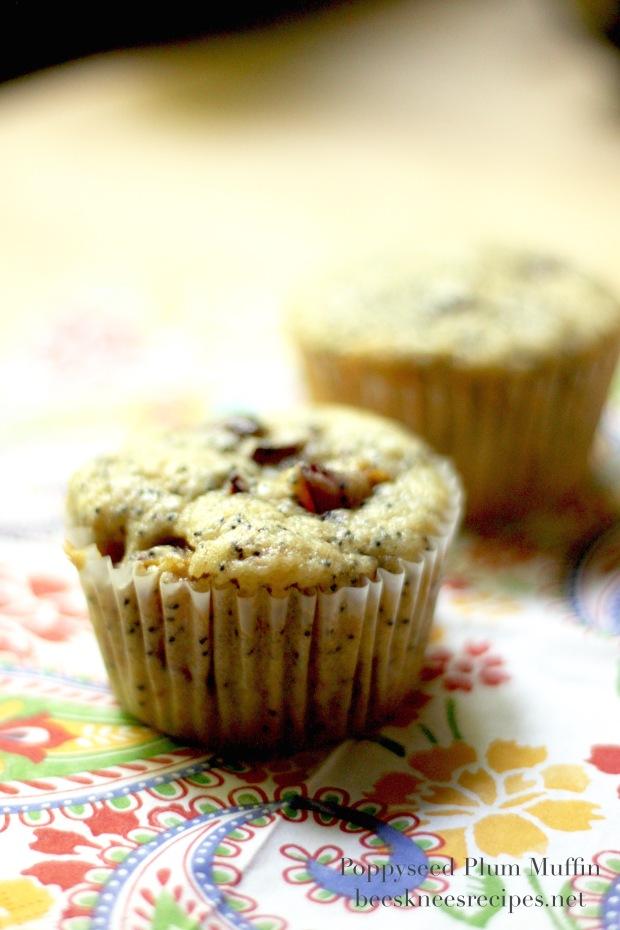 Plum Poppyseed Muffin