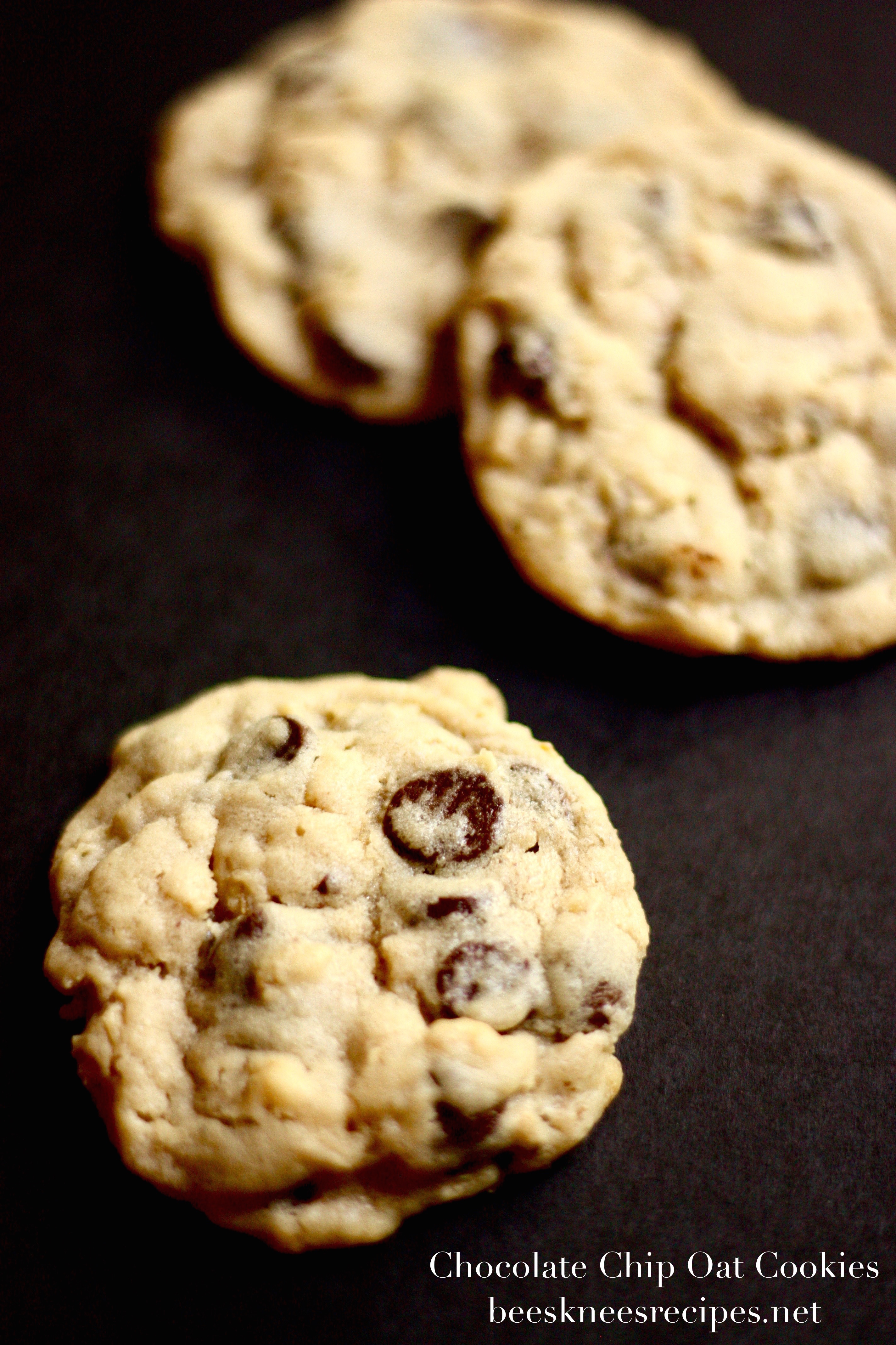 Chocolate Chip Oat Cookies – Bees Knees Recipes