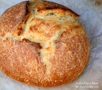KAF perfect loaf