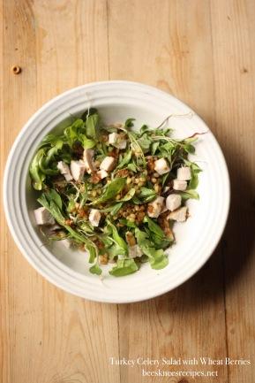 Turkey Salad Tall