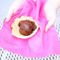 Chocolate Sorbet & Pizzelles