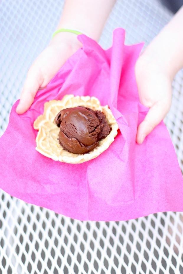 Chocolate Sorbet 3