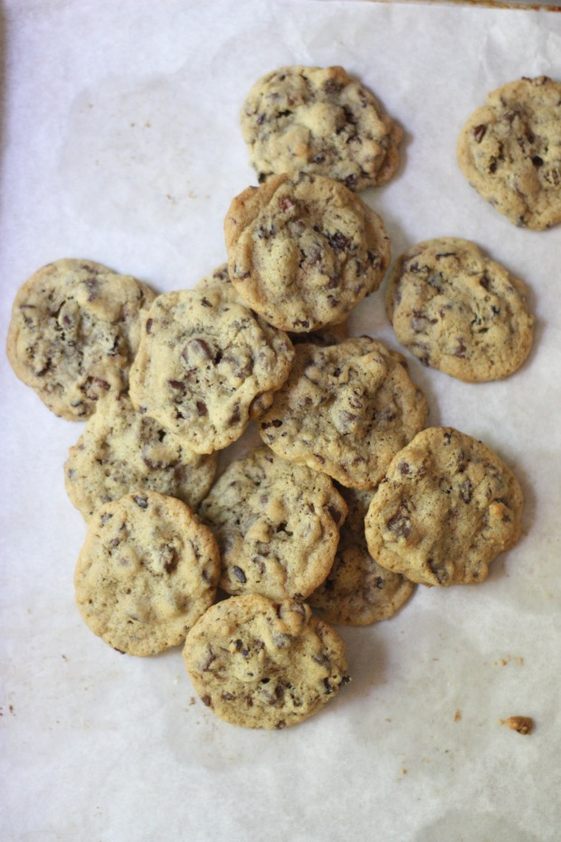 NIbby Chocolate Chips 2